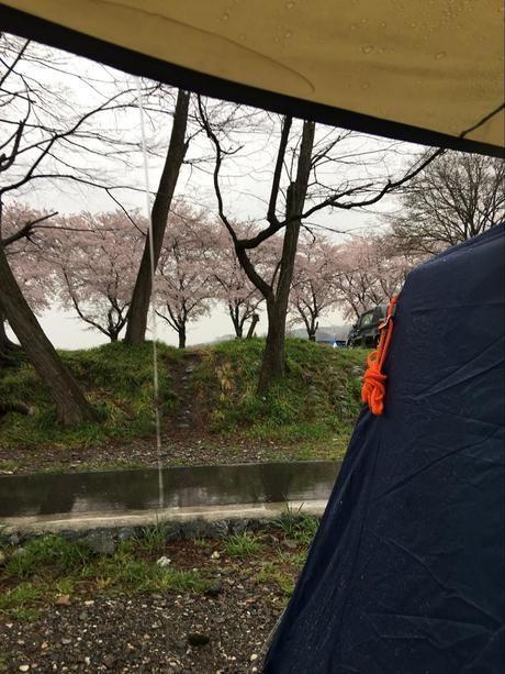 雨の日のキャンプとテントからの景色