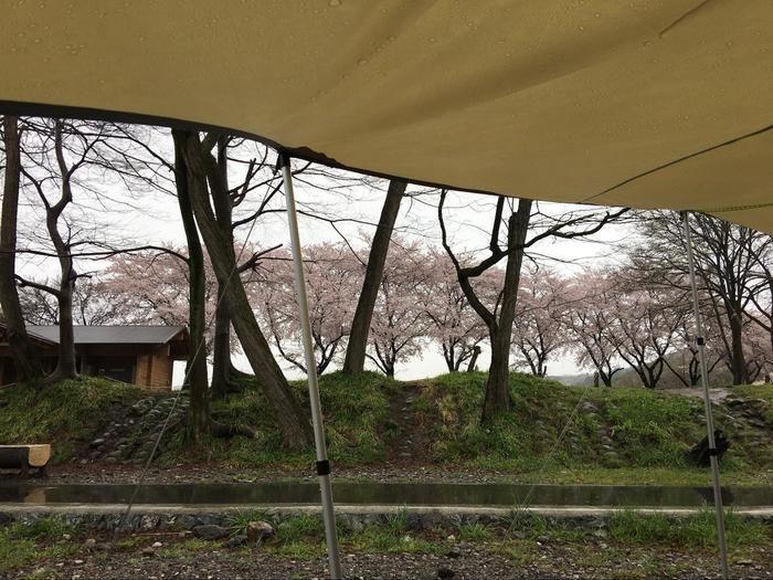 悪天候の日のキャンプのテントからの景色