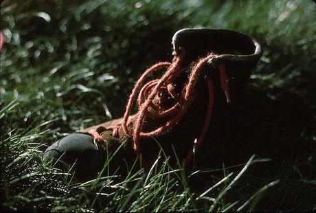 芝生の上に置かれた一足のシューズ
