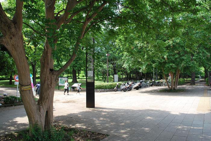 砧公園の様子