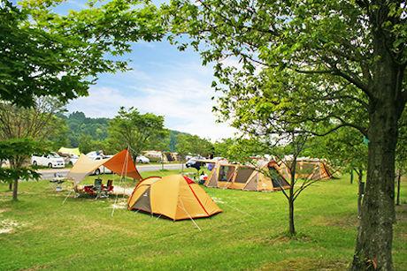 青川峡キャンピングパークのキャンプサイト