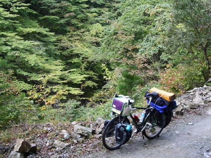 山道に停められた自転車