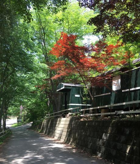 長瀞オートキャンプ場の外観