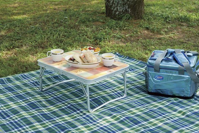 ピクニックの様子