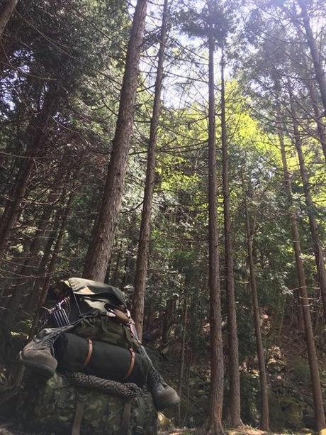 山道を登る男性の後ろ姿