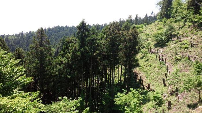 城山山頂からの景色