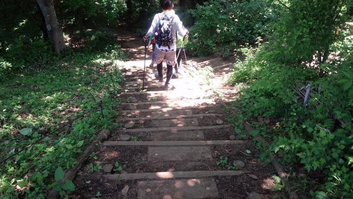 階段の下りの山道