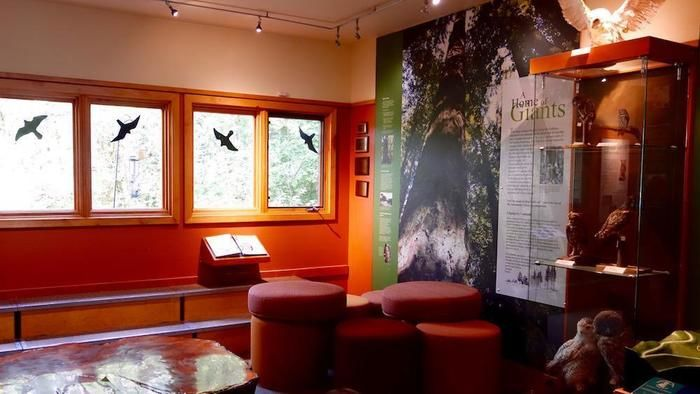 「オーデュボン協会」ワイルドライフ・ケア・センター&案内センターの外観の室内
