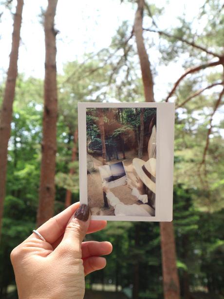 林間で本を見る写真を持ち背景をぼかしたフォトインフォト