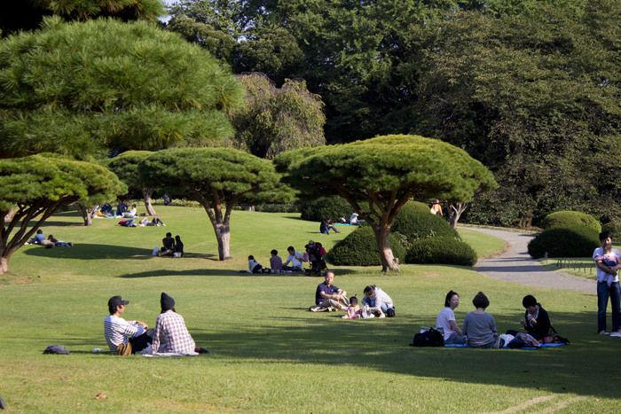 公園でピクニックを楽しむ人々