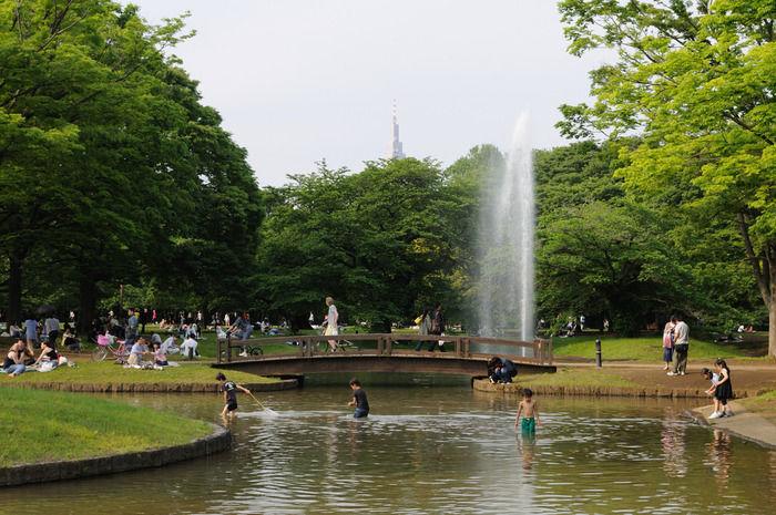 代々木公園の中央広場で遊ぶ子ども