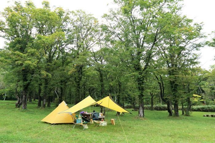 休暇村笹ヶ峰キャンプ場のキャンプサイト