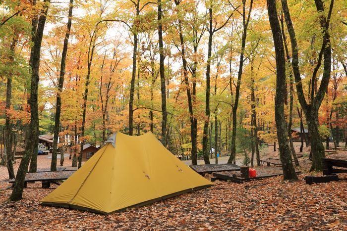 キャンピングフィールド木曽古道の紅葉したキャンプサイト