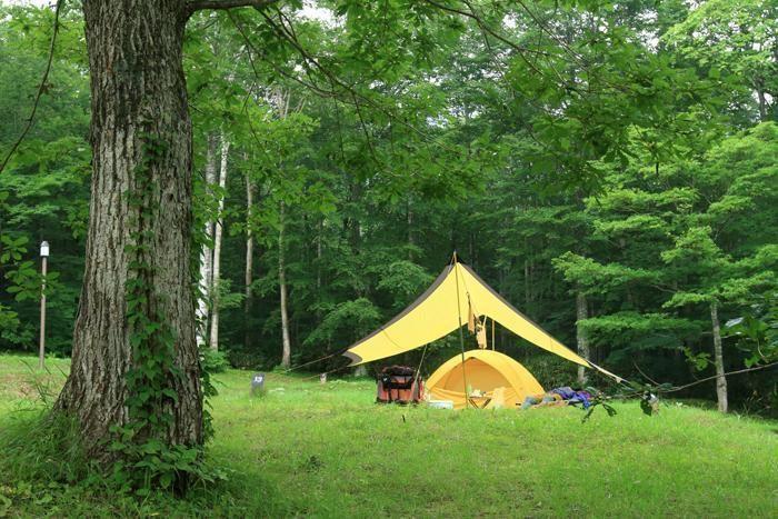 休暇村網張温泉キャンプ場の緑に囲まれたキャンプサイト