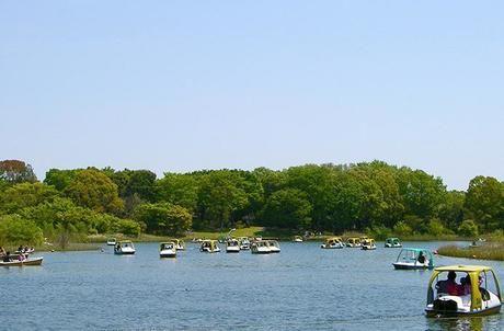 昭和記念公園のボート乗り場の様子