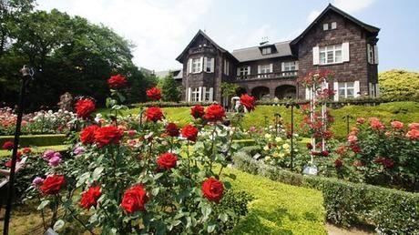 旧古川庭園のバラと洋館