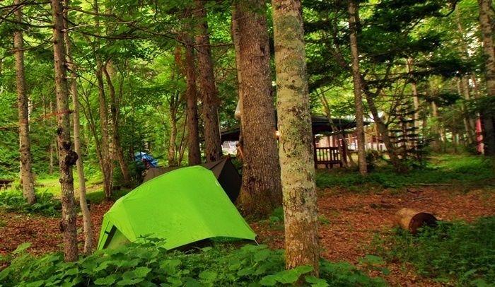 オンネトー野営場のキャンプサイトの様子