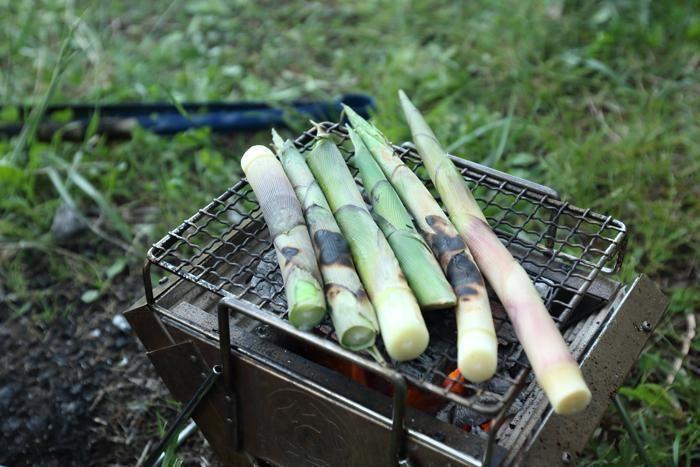根曲がり竹を炭火焼きにする様子