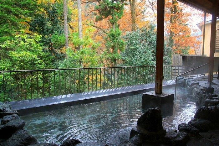 コテージ森林村近くの瀬音の湯