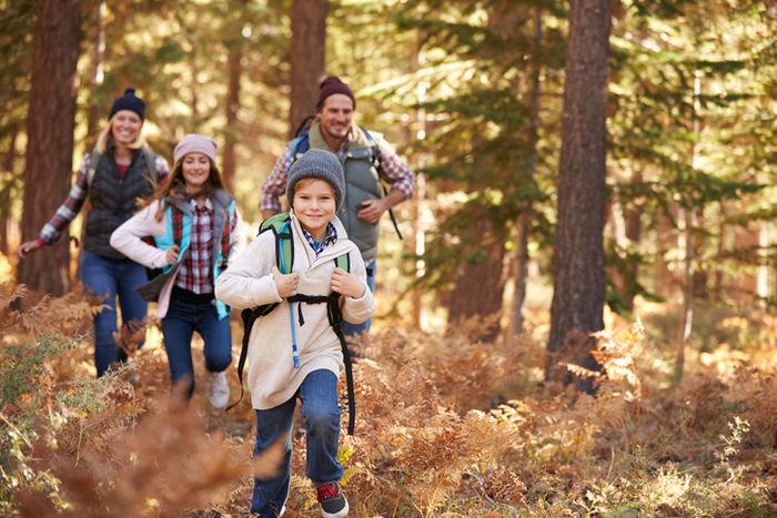 山中を走る家族