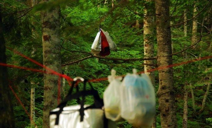高いところに吊るされたキャンプ道具