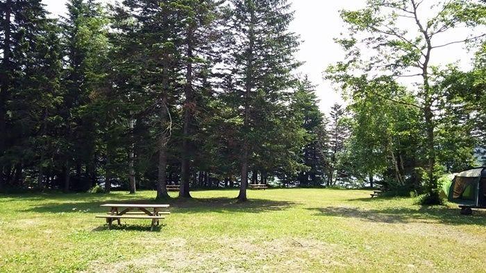然別湖北岸野営場のキャンプサイトの様子