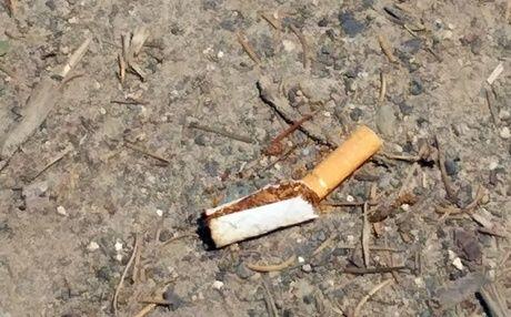 駐車場に捨てられていたタバコの吸殻