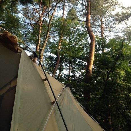 道志の森キャンプ場の様子