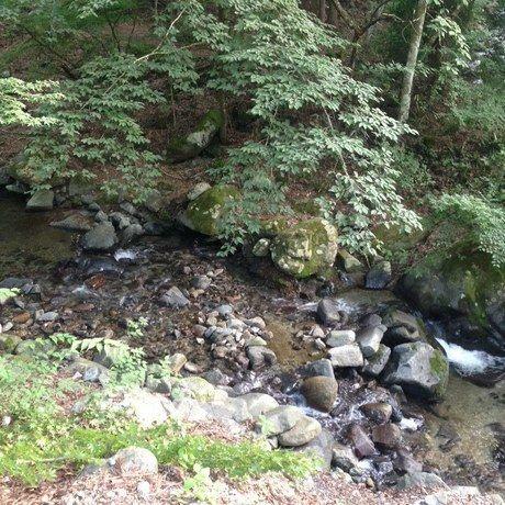道志の森キャンプ場の川岸