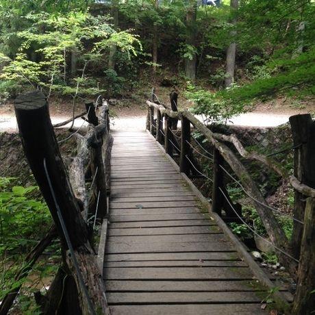 道志の森キャンプ場の橋