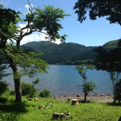 バーベキュー場から見える芦ノ湖