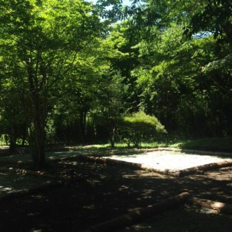 木陰の多いテントサイト