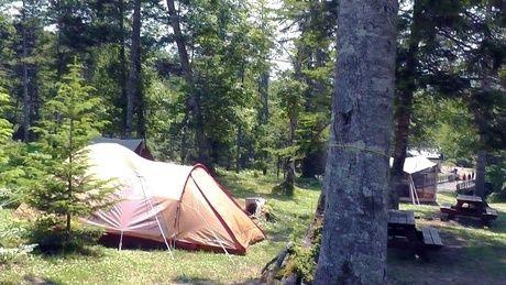 然別峡野営場のキャンプサイトの様子
