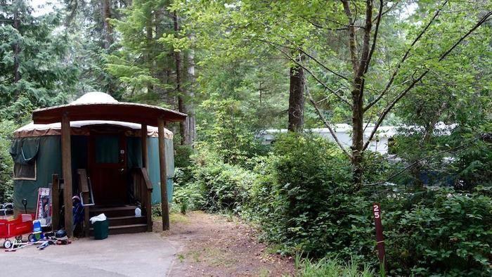 自然に囲まれたキャンプサイトの様子