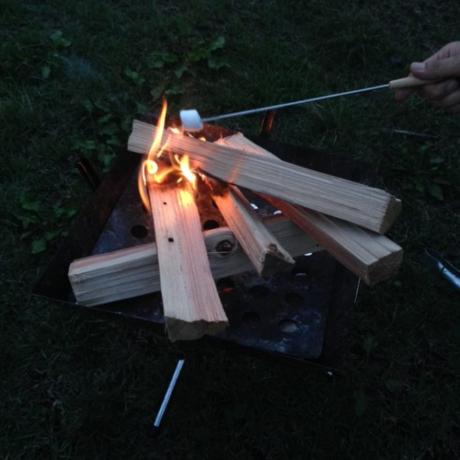 焚き火でマシュマロを炙っている様子