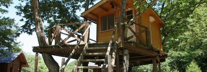 大鬼谷オートキャンプ場のツリーハウス外観