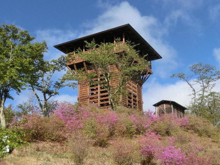 天平の森オートキャンプ場の天文台