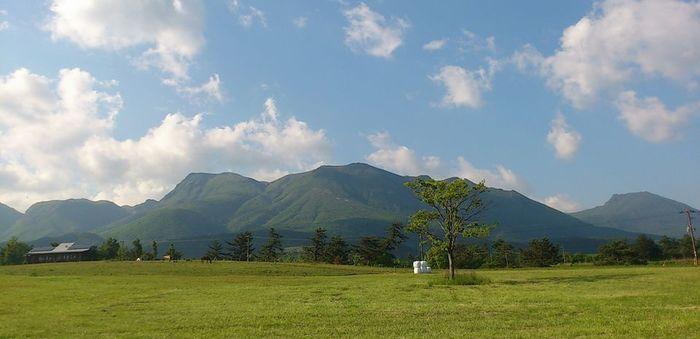 ボイボイキャンプ場の前に広がる草原の景色