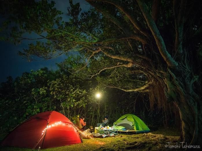 森の中で照らされているキャンプサイトと男女