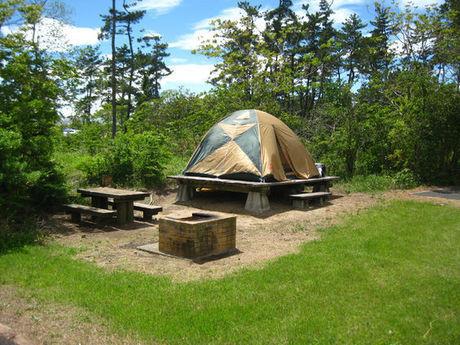 休暇村伊良湖オートキャンプ場のキャンプサイト