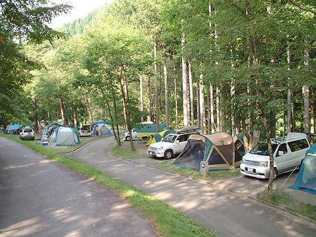 パスカル清見オートキャンプ場の林に囲まれたキャンプサイト