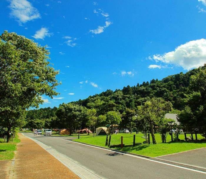 青空と緑豊かなキャンプ場