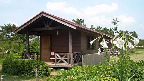 日川浜オートキャンプ場の手ぶらキャンプができるサイトの外観