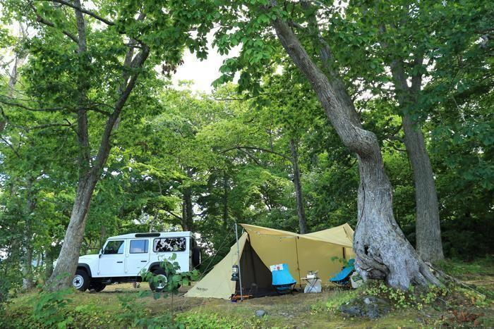 森の中に設営されたキャンプサイト
