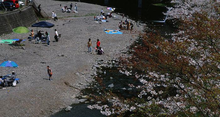 光滝寺キャンプ場と咲き始めの桜