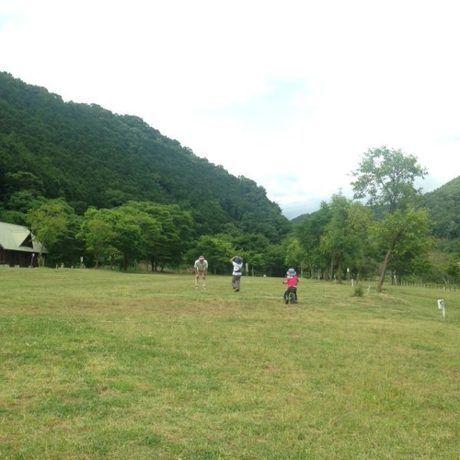 広々とした芝生で遊ぶ人々