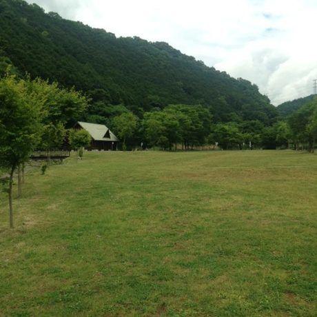 河内川ふれあいビレッジオートキャンプ場の広大な芝生サイト