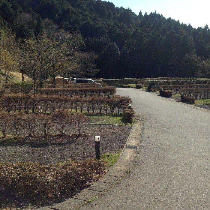 乙女森林公園第2キャンプ場のサイト