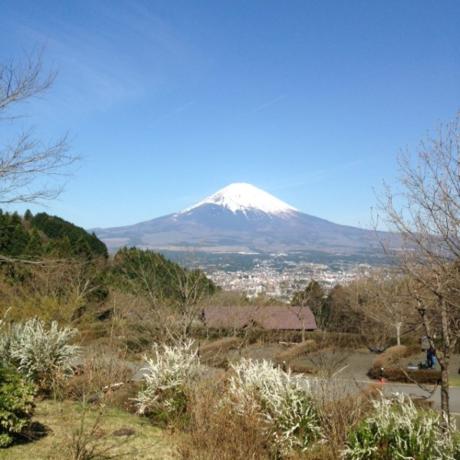 大きな富士山とその下に広がる街並み