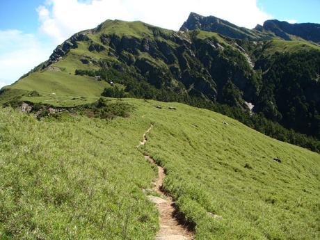 一面緑の山肌の中の一本道